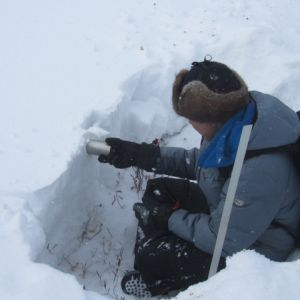 251 4 snow sampling - Home Page - Gallery Carousel